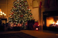 Post image for Quick & Easy Holiday Decorating